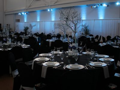 Event Lighting and Drape