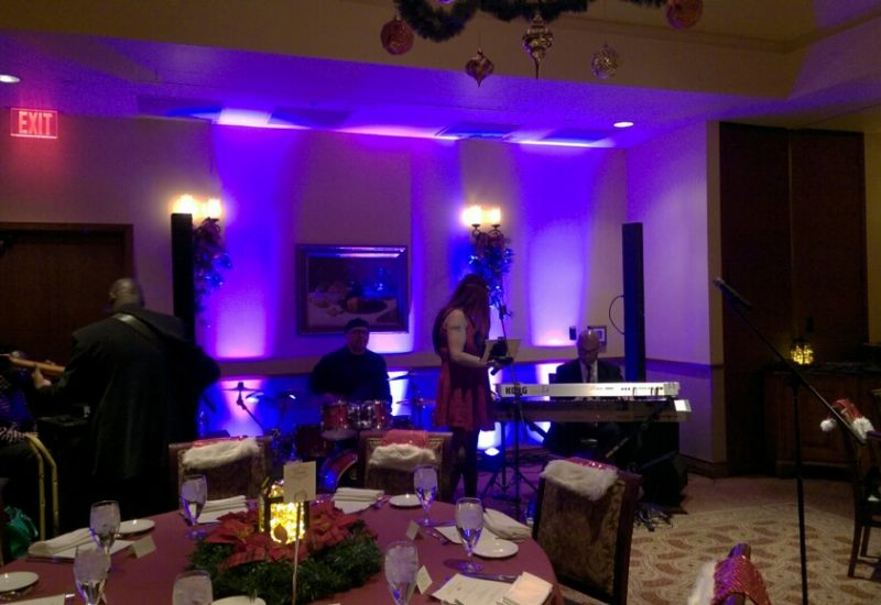 PA system and lighting for a band playing a dinner set at a corporate event.