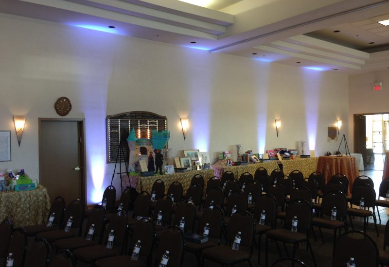 Up-lighting and audio for a silent auction and fundraising event.